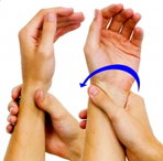 Dunsborough Physio Exercises Forearm Supination