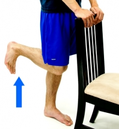 Dunsborough Physio Exercises Hamstring Curls