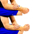 Dunsborough Physio Exercises Wrist RD/UD