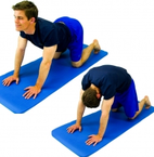 Dunsborough Physio exercises lumbar cat / camel