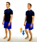 Dunsborough Physio Exercises  1/4 Squat